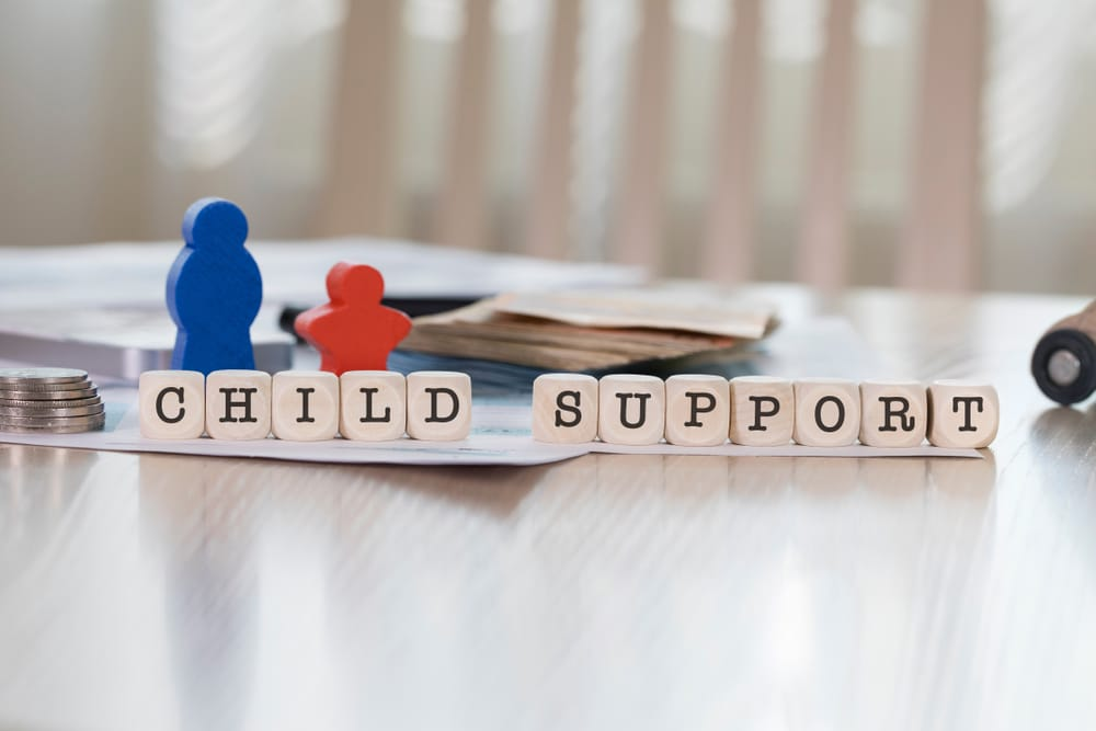 Child Support information on a table in Newcastle